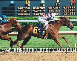 Countdown to the Kentucky Derby - 16 Days to Go!!