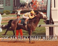 Countdown to the Kentucky Derby - 37 Days to Go!