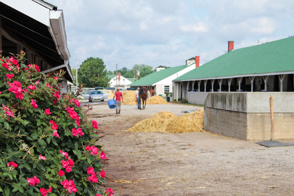 Horses Return to Churchill Downs