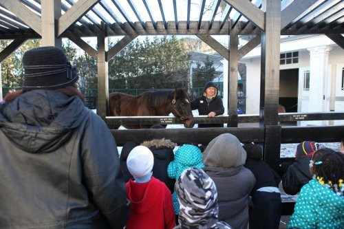 Free winter field trips at the Museum!