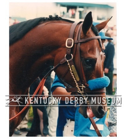 Countdown to the Kentucky Derby - 21 Days to Go!!