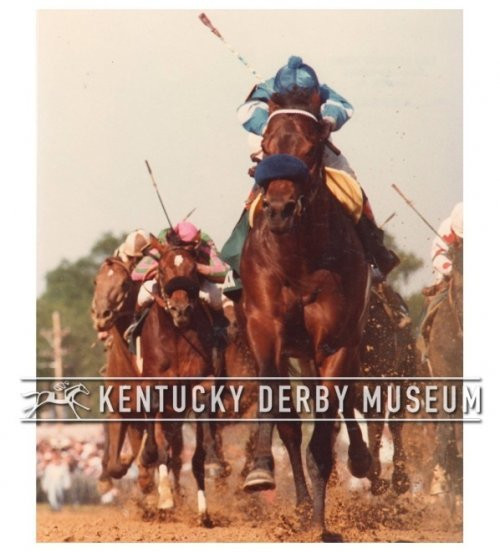 Countdown to the Kentucky Derby - 34 Days to Go!!