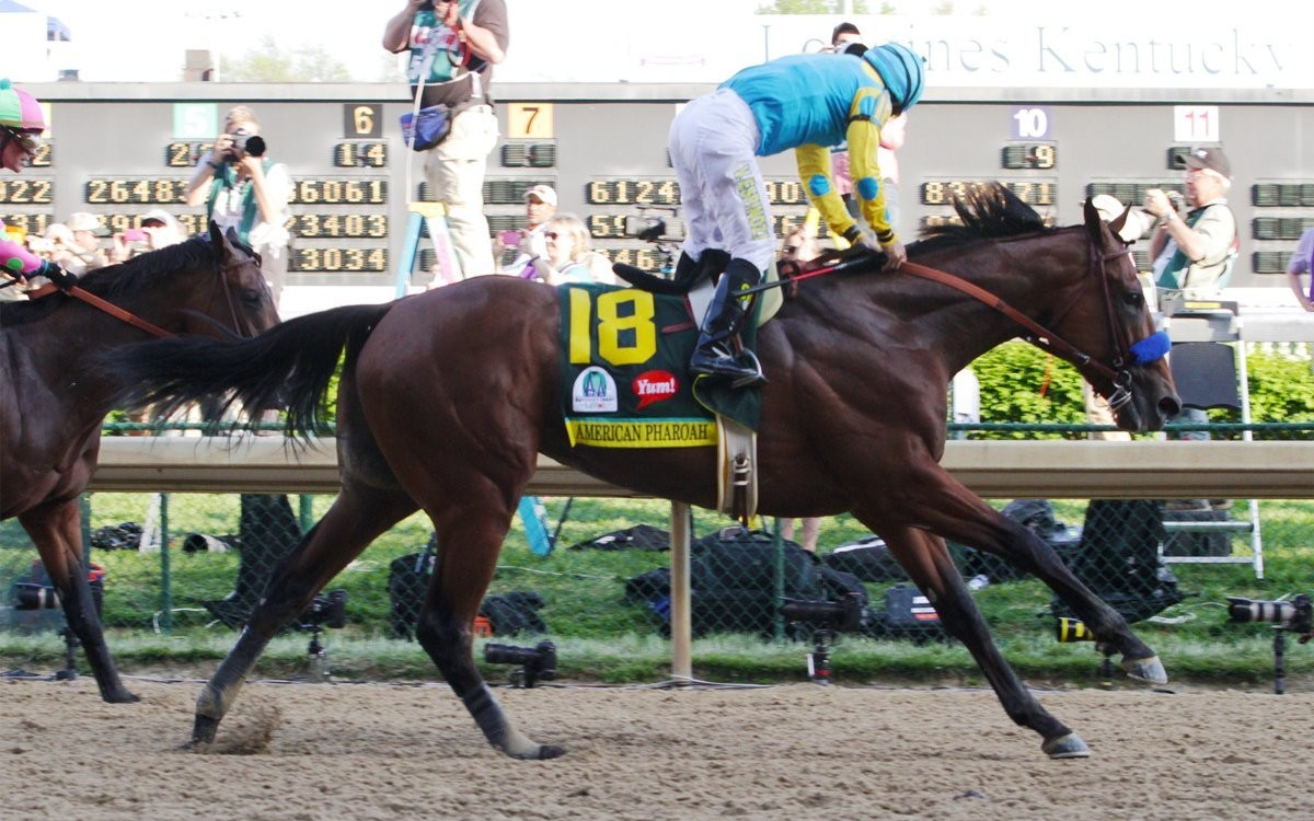Kentucky Derby Museum and Mint Julep Tours offer more opportunities to visit American Pharoah
