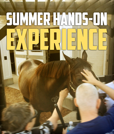 Summer Hands-On Experience